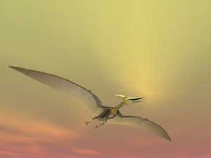 Huge Pterodactyl Flying above the sky