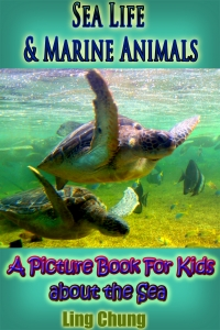 Children's Book About Sea Life and Marine Animals