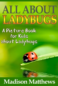 Children's Book About LadyBugs