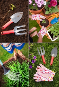 Different Kinds of Tools for Gardening