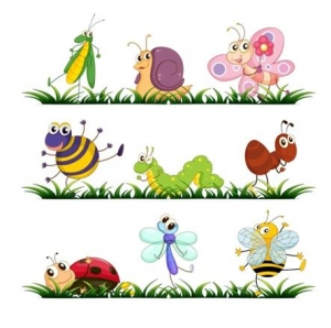 Bugs and Insect cartoons