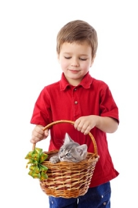 A Kid Carrying A Basket With A Cat On It