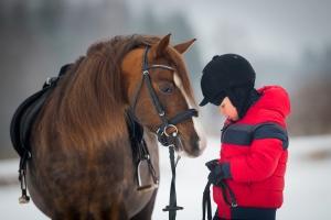 Horse and Jockey Little Boy