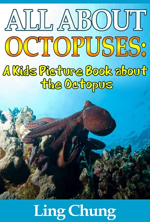 Children's Book About Octopus