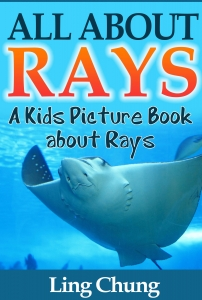 Children's Book About Rays