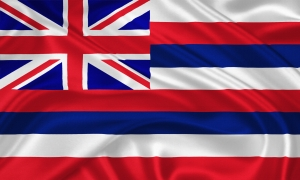 Flag of  The State of Hawaii