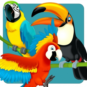 A Cartooned Illustration of Different Types of Parrots_28099865_m