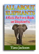 Elephant book cover small