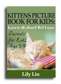 Kittens book cover small