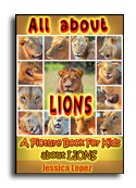 Lions book cover small