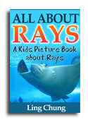 Rays book cover small