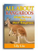 Kangaroos book cover small