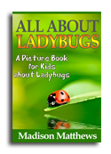 Ladybugs book cover small