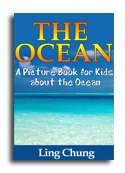 The Oceans book cover small