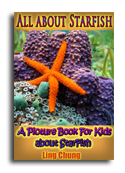 Starfish book cover small